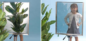 switchable mirror