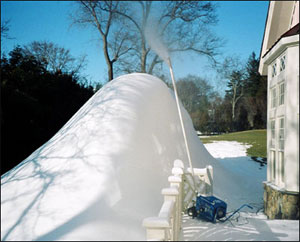 image from the www.backyardblizzard.com website