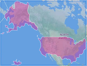 a flick image of the US, assembled by geotagging info